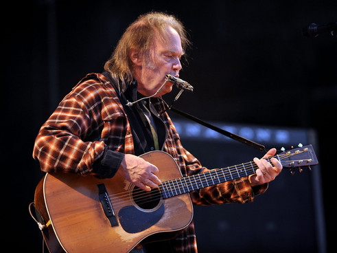 Neil Young cancela sus conciertos por culpa de un accidente