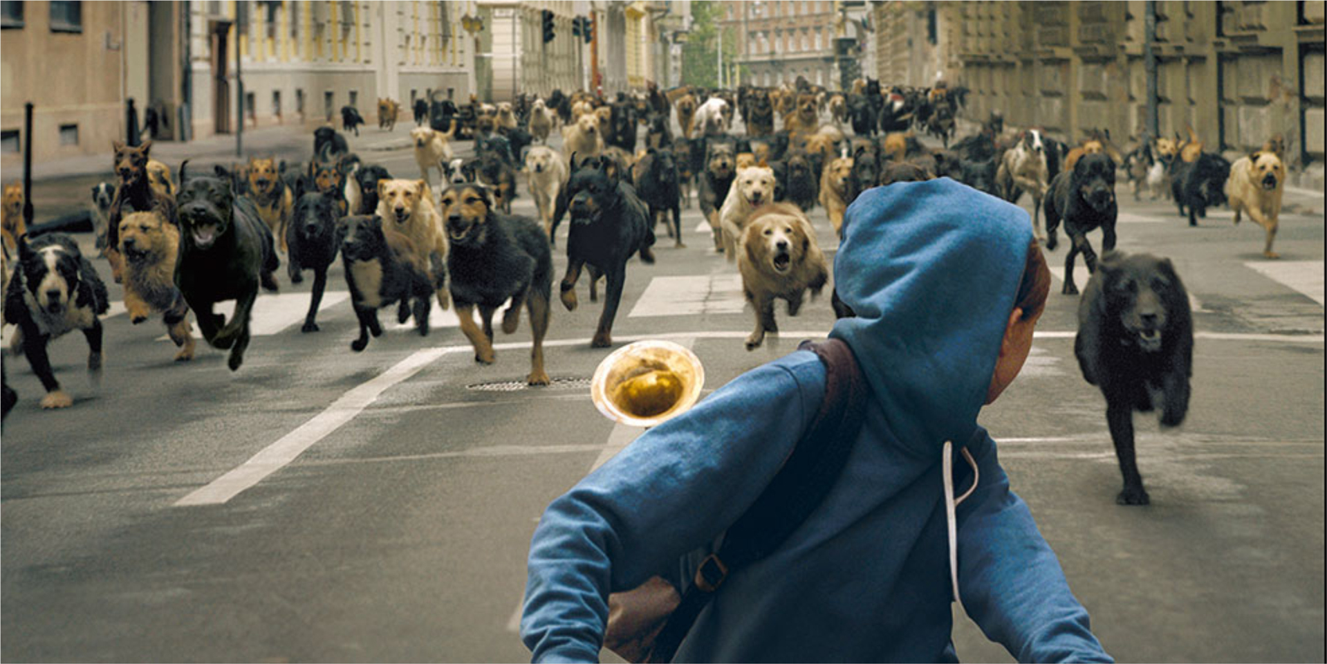 Trailer de 'White God', los perros dominan la Tierra