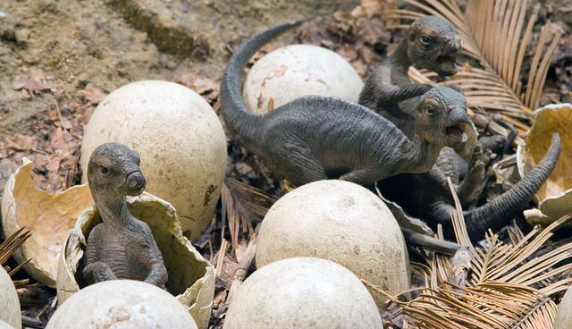 Resultado de imagen de dinosaurios con nidos