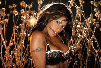 Las 5 mejores actrices porno negras desnudas
