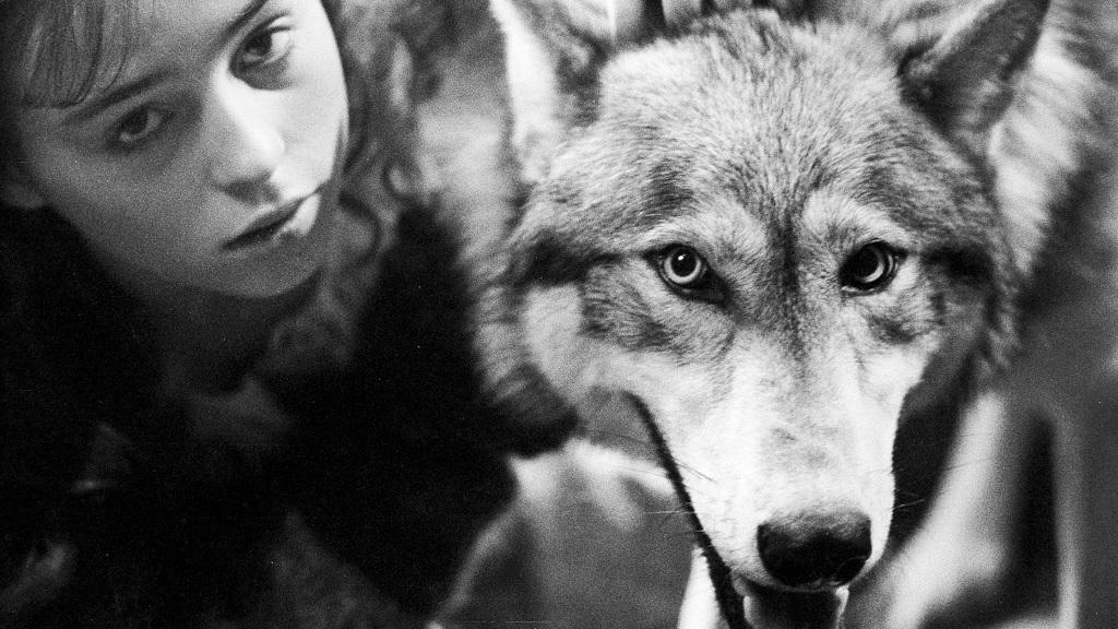 Las 8 mejores películas sobre hombres-lobo de la historia del cine