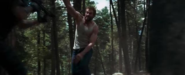 Logan bosque