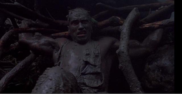 ¿Vuelve Arnold Schwarzenegger a pelear contra Predator?