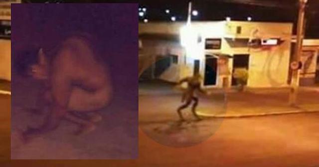 Aparición de un hombre lobo en Brasil