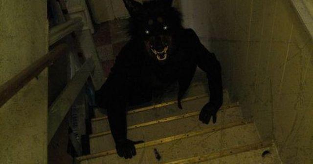 Criatura misteriosa descubierta en vídeo: ¡¡¡El Hombre Perro!!!