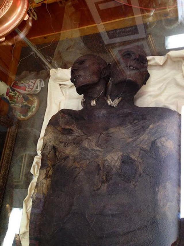 El enigma Kap Dwa, el gigante de 3.5 metros y dos cabezas